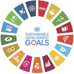 The Universities and the SDGs